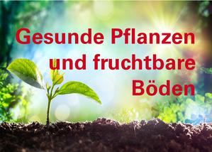 Gesunde Pflanzen 2016