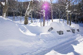 Muellabfuhr Winter